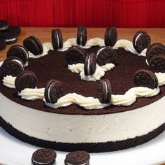Cupcake Cakes, Cupcakes, Cheesecake Cake, Tiramisu, Sweets, Ethnic Recipes, Desserts, Mango, Videos