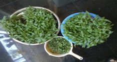 ¿Conoces los beneficios de consumir vegetales verdes?