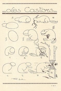 les animaux 90 by pilllpat (agence eureka), via Flickr