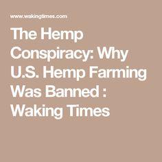 The Hemp Conspiracy: Why U.S. Hemp Farming Was Banned : Waking Times