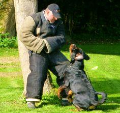Hier was wolf aan het trainen met Arne en paul voor de wedstrijd.