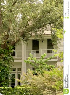 A southern mansion in the oak trees
