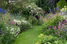 english cottage garden plant the borders of this garden are filled with old fashioned flowers english cottage garden plants australia - - Country Cottage Garden, Cottage Garden Design, Cottage Garden Plants, Farmhouse Garden, Garden Spaces, Cottage Gardens, Cottage Style, Garden Bed, Farm Gardens