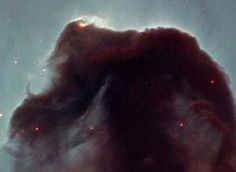 -Rising from a sea of dust and gas like a giant seahorse, the Horsehead nebula is one of the most photographed objects in the sky. NASA's Hubble Space Telescope took a close-up look at this heavenly icon ESA/NASA/NOAO/STScI/AURA