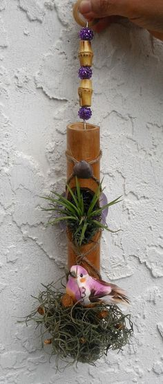 Bamboo Air Plant/Orchid Holder/Hanger by HoneyBeadsJewels on Etsy