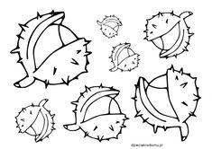 kasztany - szablon Leaf Stencil, Stencils, Autumn Activities For Kids, Pyrography, Kindergarten, Bullet Journal, Education, School Stuff, Classroom