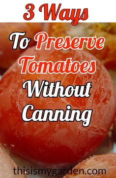 3 Ways To Preserve Tomatoes Without Canning tomato preserving freezing dehydrate garden canning thisismygarden is part of Freezing tomatoes - Garden Tomato Recipes, Fresh Tomato Recipes, Vegetable Recipes, Tomato Canning Recipes, Tomato Ideas, Easy Canning, Canning Tips, Preserving Tomatoes, Canning Tomatoes