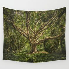 Spirits inside the wood Wall Tapestry