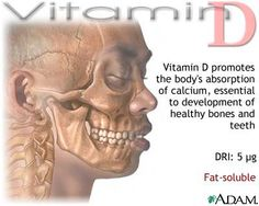 Benefits of Vitamin D3 - http://www.amazon.com/supplement-ingredients-artificial-requirements-guarantee/dp/B00GALDRXU