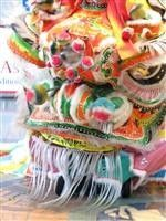 In honor of the 2013 Chinese New Year, the Asian Martial Arts Studio will present a Classical Southern Style Lion Dance performance complemented by live percussion, including gongs, drums and cymbals, followed by a demonstration of various Kung Fu forms. Kick off the Year of the Snake at the DIA!