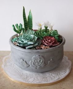 "Képtalálat a következőre: ""how to make a fondant cactus"" Fondant Cakes, Cupcake Cakes, Fondant Icing, Beautiful Cakes, Amazing Cakes, Cactus Cake, Gum Paste Flowers, Angel Cake, Salty Cake"