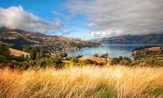 Beautiful Akaroa, THE most recommended place in New Zealand. Photo by Trey Ratcliff