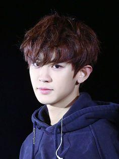 Handsome as hell. Baekhyun, Chanyeol Cute, Park Chanyeol Exo, Chansoo, Chanbaek, Kim Jong Dae, Z Cam, Exo Korean, Exo Members