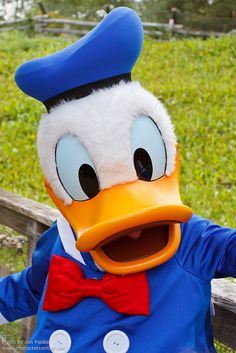 If i ever go back to disney land I'm defiantly having my photo taken with Donald duck