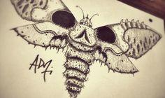 Moth / Polilla / Skull / Death / draw / sketch