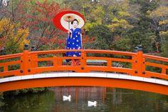 Kyoto città più bella del mondo: parola di turista - Repubblica.it http://www.repubblica.it/viaggi/2015/07/08/foto/kyoto_la_citta_piu_bella_del_mondo_parola_di_turista-118637617/1/