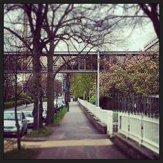 #universityofleicester footbridge #brutal_architecture #leicester  #leicestershire