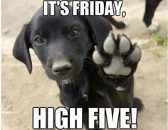 IT'S FRIDAY  HIGH FIVE!
