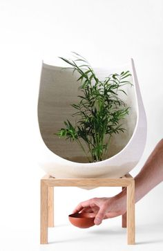 """productdesigncollection: """" Wellspring planter, by Martín Azúa Barcelona-based designer Martín Azúa has recently completed the Wellspring project, a series of experimental porous vases that continue..."""