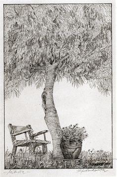 Ignacio Klindworth. Mimosa en Jávea. Tinta sobre papel. 21x30cm. Barcelona 1991. www.ignacioklindworth.es