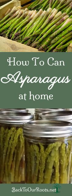 I prefer to eat my asparagus fresh in the spring but its always nice to have some available for other times of the year. So let's start canning asparagus! Pressure Canning Recipes, Home Canning Recipes, Canning Tips, Pressure Cooker Recipes, Cooking Recipes, Pressure Cooking, Canning Soup, Canning Asparagus, Canning Vegetables