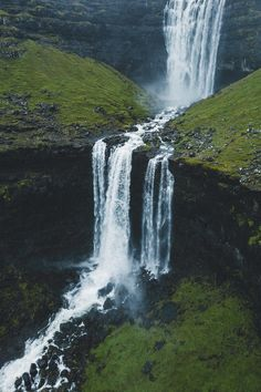 palm trees Faroe Islands | ( by Niklas )