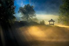 Misty Morning in Chattahoochee - Modern hi-res digital canvas print from http://www.the-artwork-factory.com/ By The Artwork Factory®.