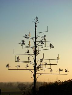 Weather vane of weather vanes Sun Garden, Lawn And Garden, Garden Art, Birds That Cannot Fly, Wind Direction, Weather Vanes, Wind Spinners, Outdoor Signs, Shop Signs