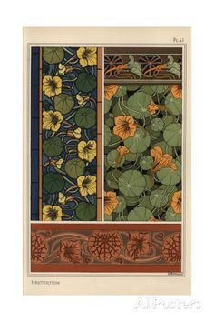 Nasturtium in Art Nouveau Patterns Giclee Print by Eugene Grasset at…