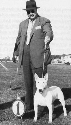 Dr. Montgomery with his homebred Ch. Dancing Master of Monty-Ayr, twice winner of the Bull Terrier Club of America specialty in the late 1950s and early '60s.