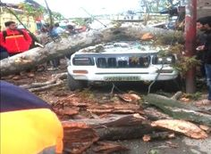 tree falls on a car in Jammu Earthquake In Pakistan, 10 Picture, Autumn Trees, Natural Disasters, World, Nature, Pictures, Life, Image