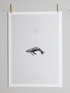 Whale Reprise by Greg Eason. Buy print at https://paper-collective.com/product/whale-reprise/ #papercollective #art #illustration #graphics #monochrome #grey #print #poster #posterdesign #design #interior #home #decor #homedecor #wallart #artprint