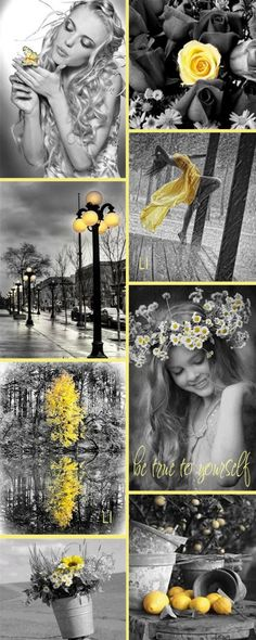 Yellow Splash of Color / Lu's Inspiration ღ