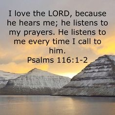 Psalms I love the LORD, because he hears me; he listens to my prayers. Prayer Scriptures, Bible Prayers, Faith Prayer, Prayer Quotes, Faith In God, Biblical Quotes, Religious Quotes, Bible Verses Quotes, Psalms Verses