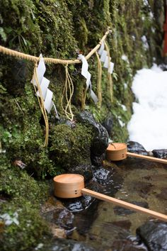 Choze water for cleanse your hands before worshiping at temples or shrines Buddhism, Temples, Worship, Cleanse, Landscapes, Hands, Japan, Water, Paisajes