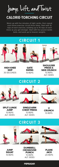 Calorie Torching Workout Infographic