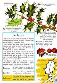 Manuels anciens: Orieux, Everaere, Exercices d'observation foreignlanguages Languages Online, Foreign Languages, How To Speak French, Learn French, Study French, Language Quotes, French Collection, French Education, French Expressions