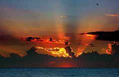 Google Image Result for http://kimolsen.files.wordpress.com/2007/10/orange-sunset.jpg