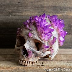 Image of ORGANIC GROWTH CRYSTAL SKULL <br> free shipping <br> USD