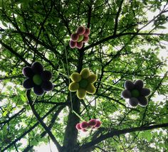 Blomster uro - Tante tråd Fruit, The Fruit