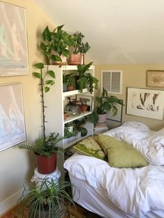 My tiny bedroom that I'm in love with (North Carolina). The place I'm renting has beautiful old wooden floors and lots of light for my plants so I couldn't be happier. Dream Rooms, Dream Bedroom, My New Room, My Room, Room Ideas Bedroom, Bedroom Decor, Bedroom Inspo, Study Room Decor, Cozy Bedroom