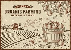 Apple Organic Farming Landscape by iatsun Vintage organic farming label on apple harvest landscape. Editable EPS10 vector illustration in woodcut style with clipping mask.