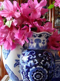 Blue and white porcelain with vibrant azaleas