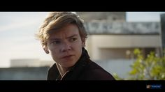 Newt from TDC trailer - Please, stay alive...