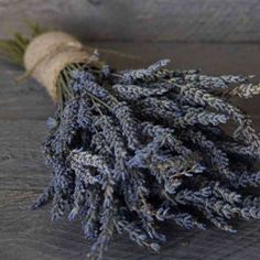 Dried French Lavender, a beautiful accent for all seasons. #lavender #frenchcountry #homedecor #driedflowers #farmhousestyle #frenchlavender #aromatherapy DriedDecor.com