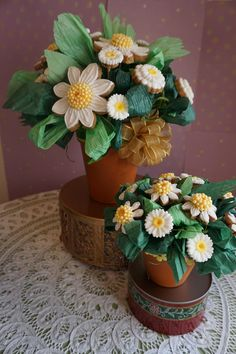 daisies spring pots | Cookie Connection