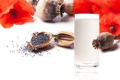 Makové mléko – o co jde a jaké má účinky? Glass Of Milk, Panna Cotta, Ethnic Recipes, Food, Dulce De Leche, Meal, Essen, Hoods, Meals