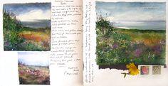 Amanda Hoskin Oils Gallery