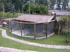 Idéias para campos e jardins: Agosto 2010