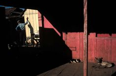 Color Photographs From The Masters Of Photography Photo By: Alex Webb
